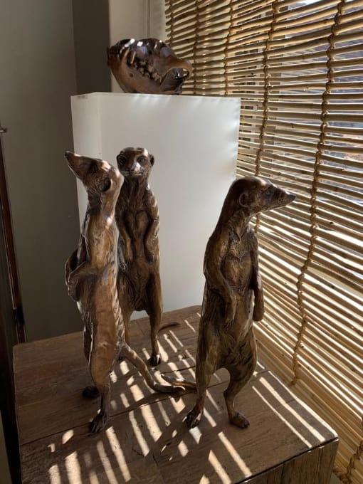 Tswalu Gallery