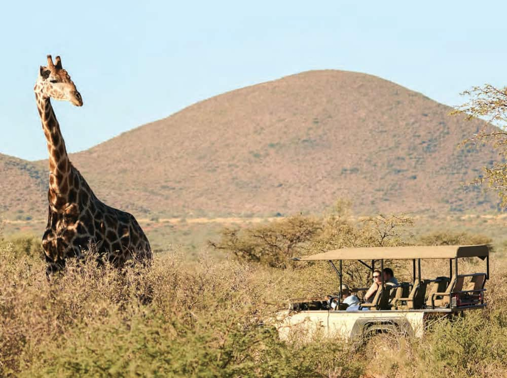 Out Of This World Tswalu Experience