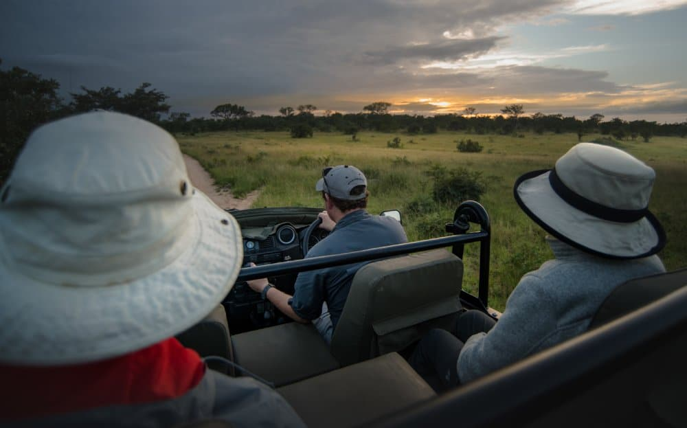 Luxury Travel Marketing - Savanna Private Game Reserve